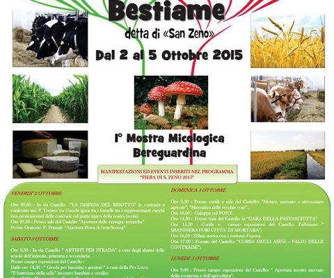 Fiera_Bereguardo_2015_manifesto